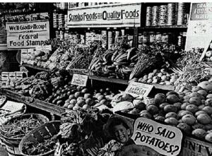 surplus foods 2