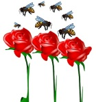 bees and roses