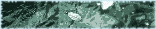 floating-leaf-public-domain