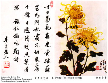 chrysanthemum website ong